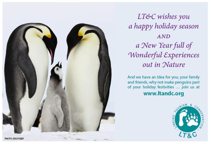 Happy_holiday_season
