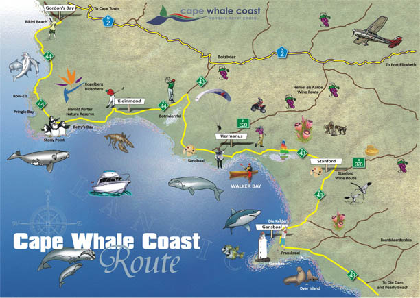 Linking conservation to maritime tourism on the Cape Whale Coast – Tourist Attractions Map In South Africa
