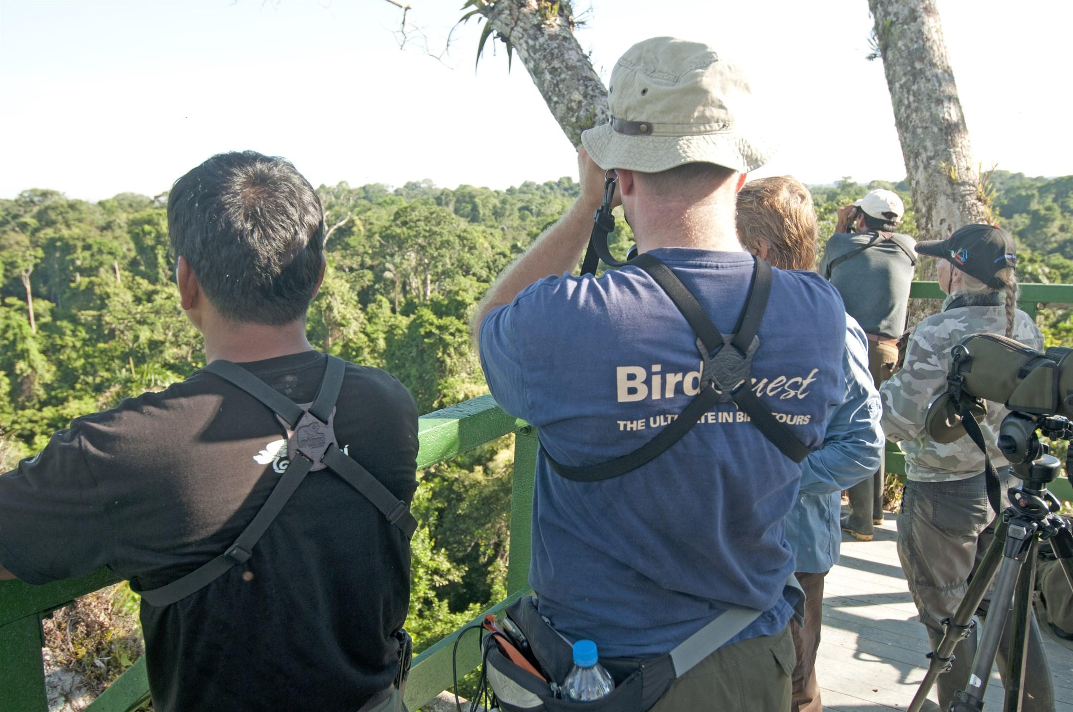birders-in-amazone-rainforest-yasuni-national-park-ecuador_c7a6-2200x1461px