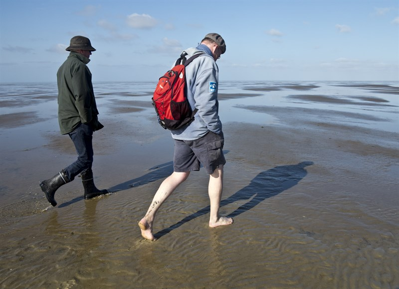 walking-on-the-seabed-from-hallig-hooge-to-japsand-national-park-schleswig-holstein-wadden-sea_b2c1-800x579px
