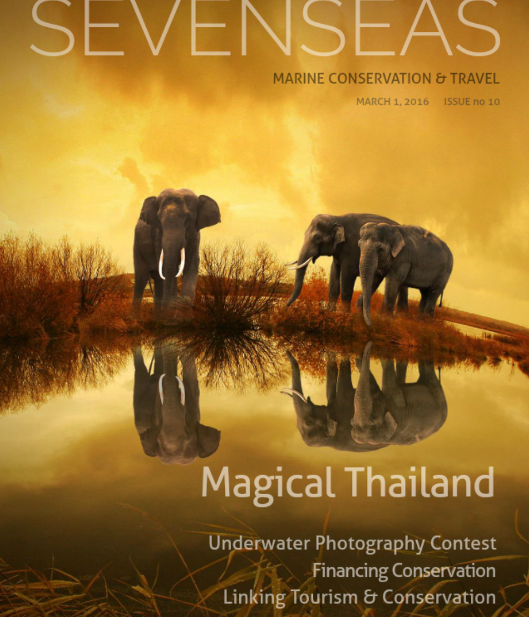 Linking Tourism & Conservation – Page 16 –