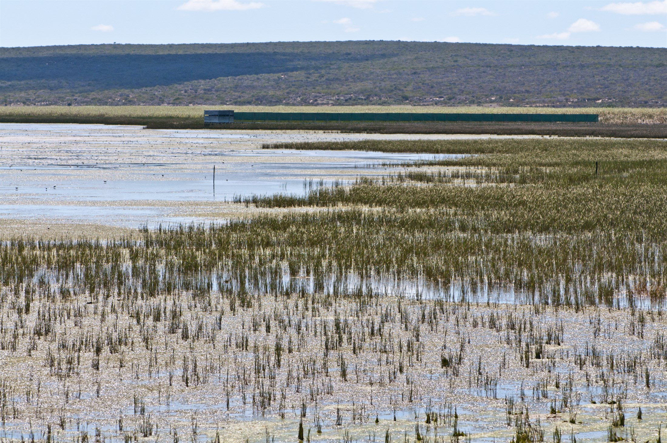 saltmarshes-tidal-flats-and-bird-observation-hide-west-coast-national-park-south-africa_54d1-2200x1461px