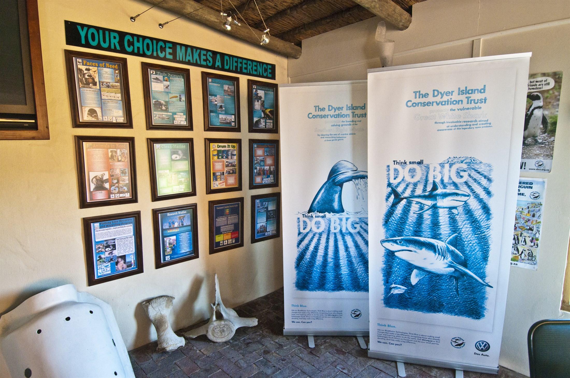 white-shark-tourism-gaansbaai-western-cape-south-africa_105b-2200x1461px