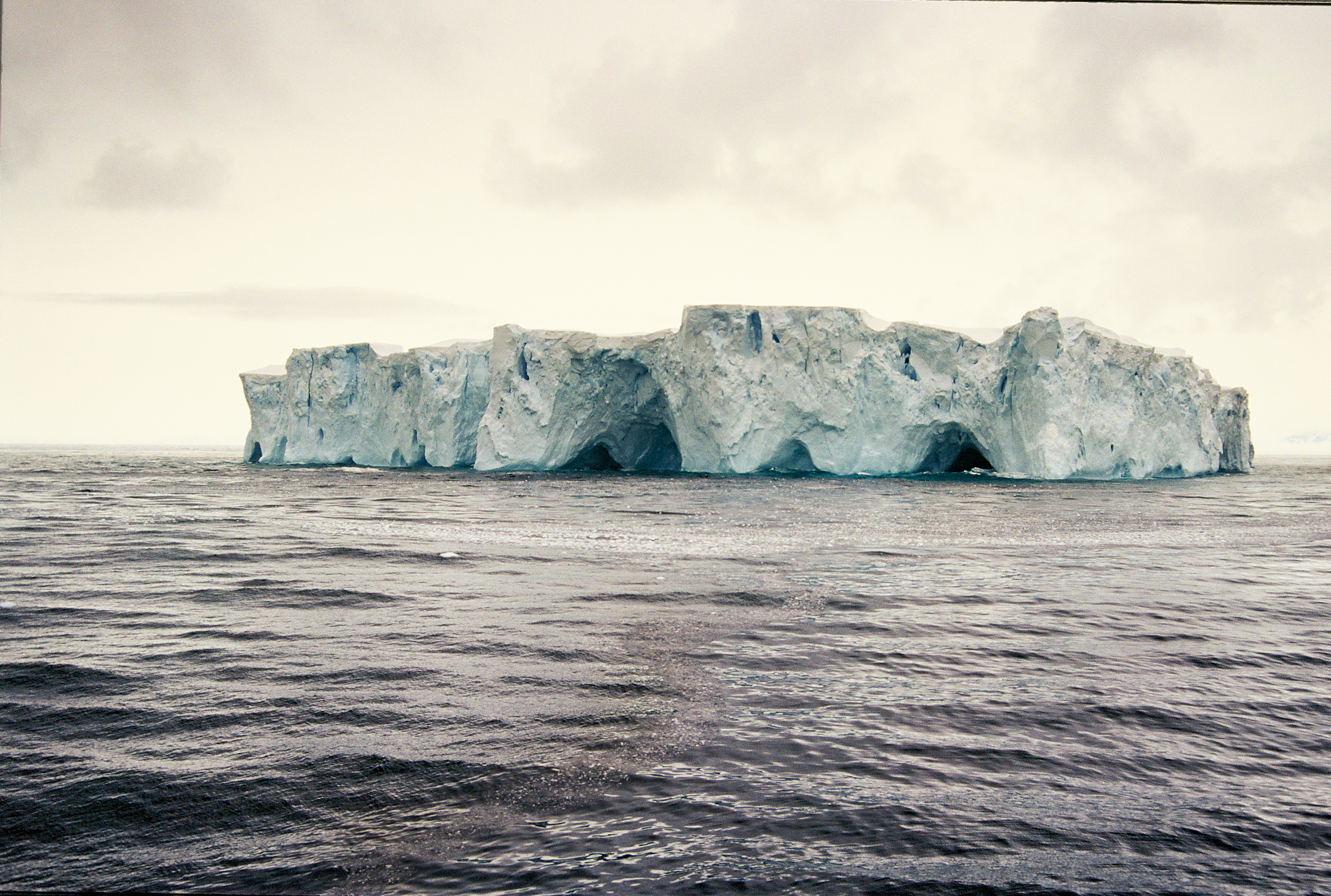 Shelf-Iceberg