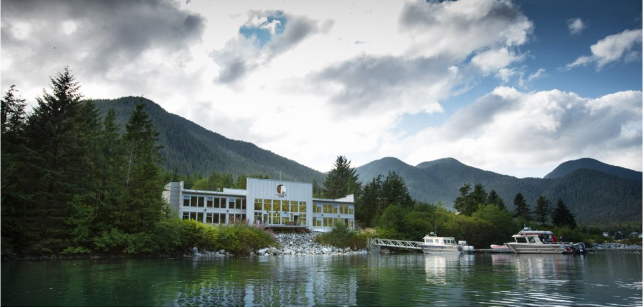 Spirit Bear Lodge
