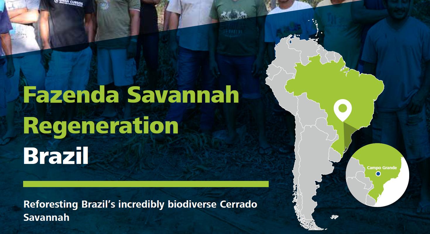 Fazenda Savannah Regeneration, Brazil – Linking Tourism