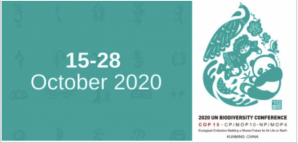 CBD COP15 - POSTPONED til 2021 @ Kunming, Yunnan Province of China