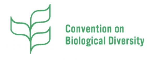 CBD COP15 will split its COP meeting in Kunming, China, into two one in October 11-15, 2021 and one April 25 - May 8, 2022 @ Kunming, Yunnan Province of China