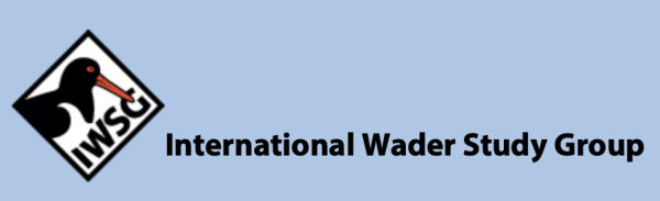 International Wader Study Group Annual Meeting (50th anniversary of IWSG) on Sylt, Germany @ Rantum | Sylt | Schleswig-Holstein | Germany