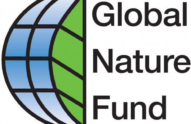 Logo GNF JPG