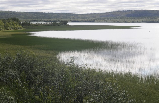 russian-norwegian-border-pasvik-valley_1e69-2200x1461px