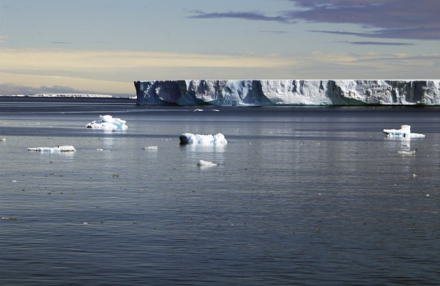 Shelf-Iceberg. Photo: Peter Prokosch